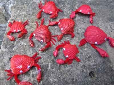 Conchas-pintadas-de-animales1